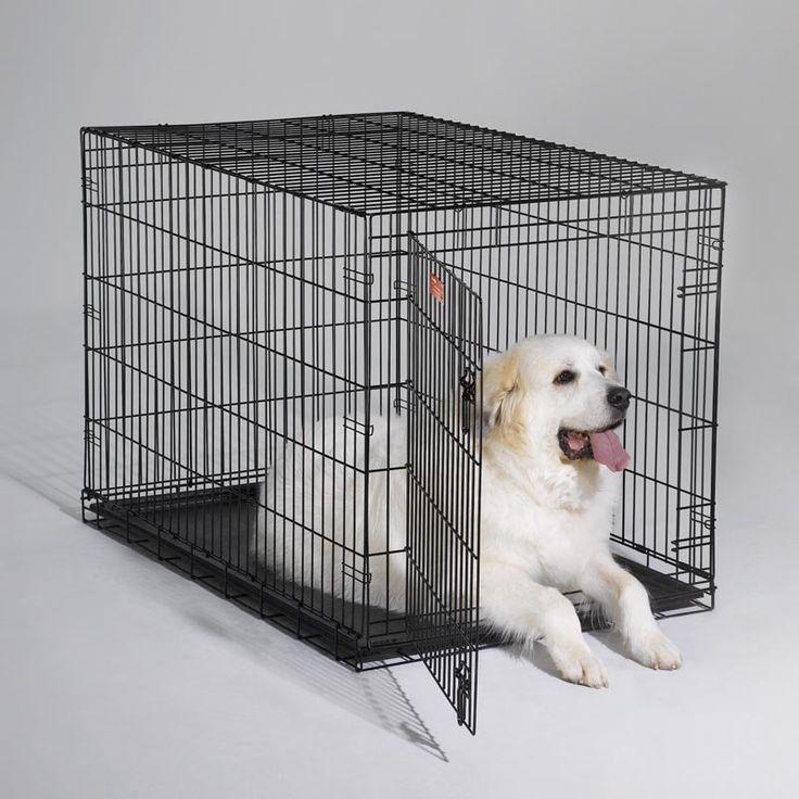 MidWest iCrate Folding Single Door Dog Crate - 1548U