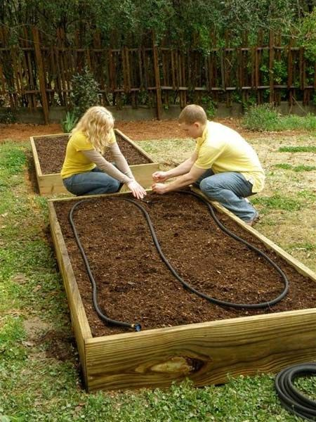 Simple 4-board garden beds. Board size is 2x12. Pre-drill holes to avoid splitting; use deck screws.