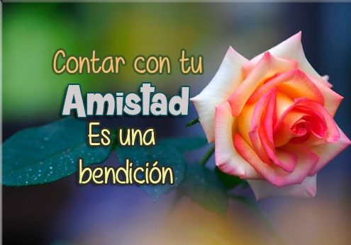 Imagenes+De+Rosas+Con+Mensajes+De+Amistad