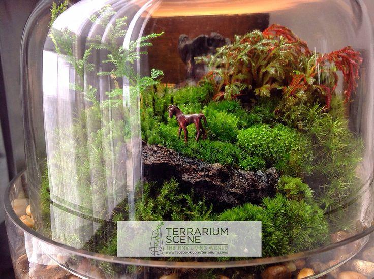 25 best ideas about terrarium scene on pinterest mini. Black Bedroom Furniture Sets. Home Design Ideas
