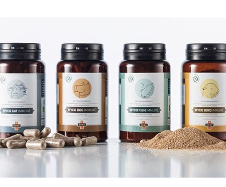 Mushroom Based Supplement Packaging Excellence