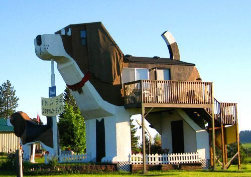 This is the Dog Bark Park hotel in Idaho!