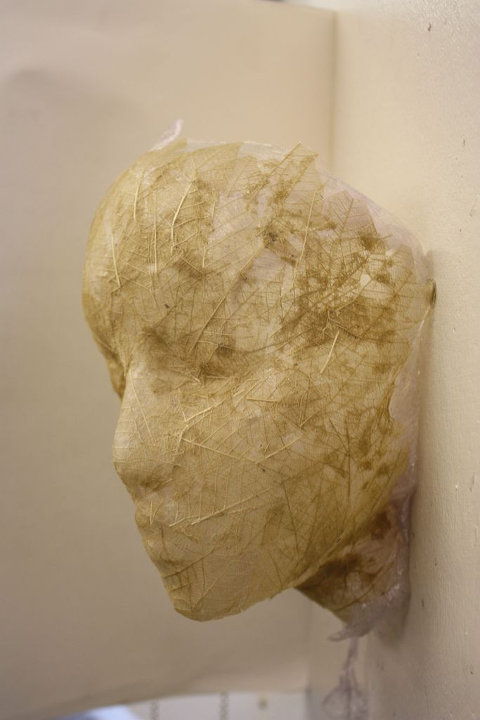 Fragility (leaf skeleton/clingfilm sculpture) | by Ruby Bird 12
