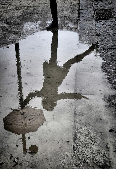umbrella puddle