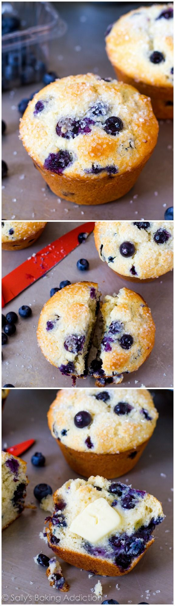 Big, bakery style Blueberry Muffins. My best-ever blueberry muffin recipe is easy to make! @Sally McWilliam McWilliam [Sally's Baking Addiction]