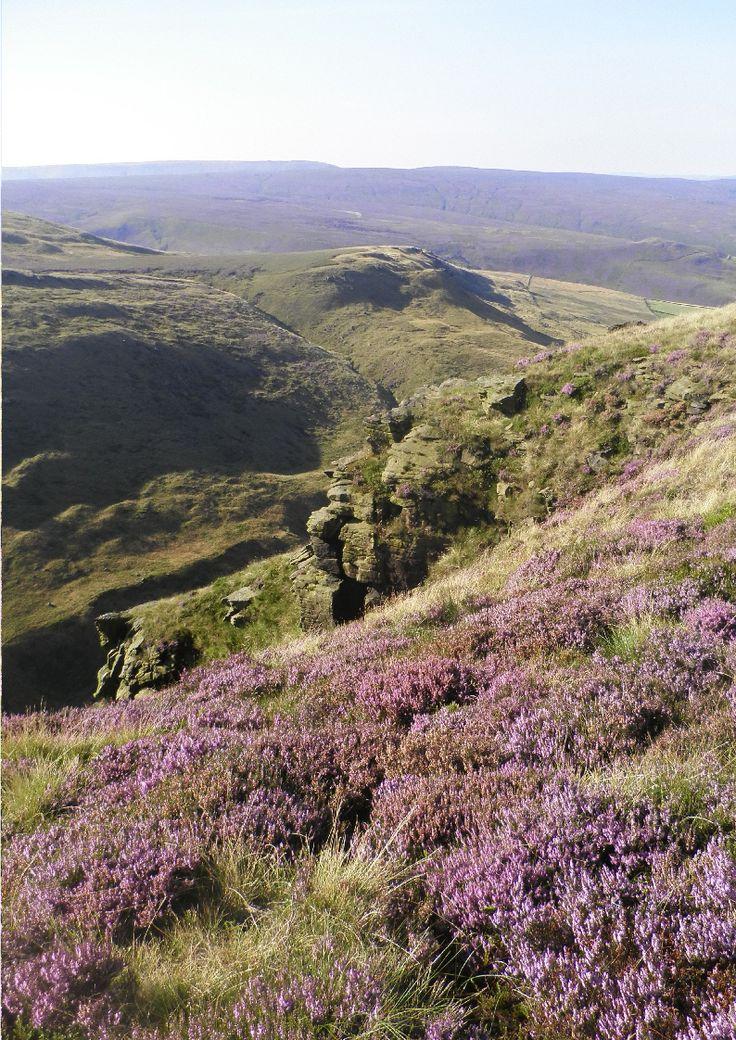 Bleaklow just above Old Glossop, Derbyshire
