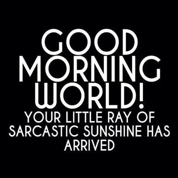 GOOD MORNING!! YOUR LITTLE RAY OF SARCASTIC SUNSHINE IS HERE!! If you ever need someone to talk to, I'm here! :) ~ Reagan