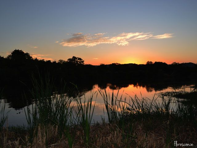 Sunset, Sabie River, Hazyview, Mpumalanga, (c) Florescence