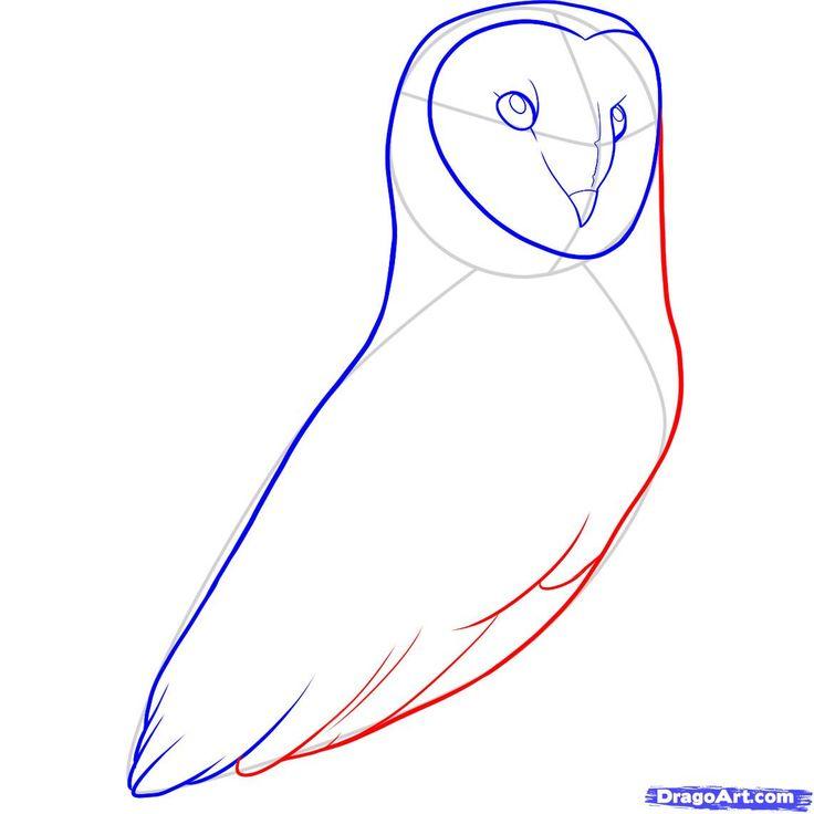 barn owl diagram: 67 best animatronics images on pinterest