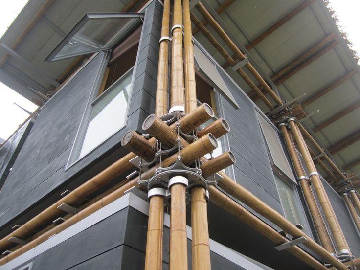 Galería de Energy Efficient Bamboo House / Studio Cardenas Conscious Design - 2