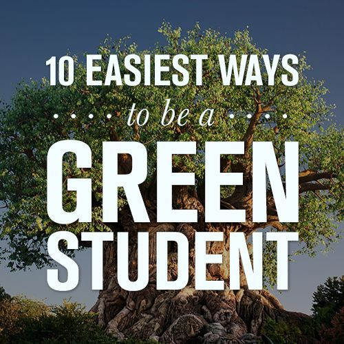 The 10 easiest ways to be an eco friendly student for Ways to live green