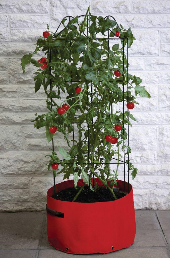 """Der """"Tomato Planter Patio"""" von Haxnicks ist speziell für groß und buschig wachsende Tomatenpflanzen ausgelegt. Das Klettergerüst ist ganz einfach aufzubauen und perfekt für Terrasse, Balkon oder Garten. Der praktische Pflanzsack hat..."""
