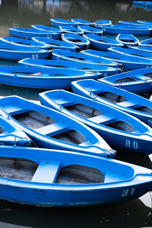 Did you know that 'Lusty Glaze' means a place to view blue boats - Cornwall