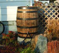 50 best rain barrel decorating ideas images on pinterest rain barrels garden ideas and. Black Bedroom Furniture Sets. Home Design Ideas