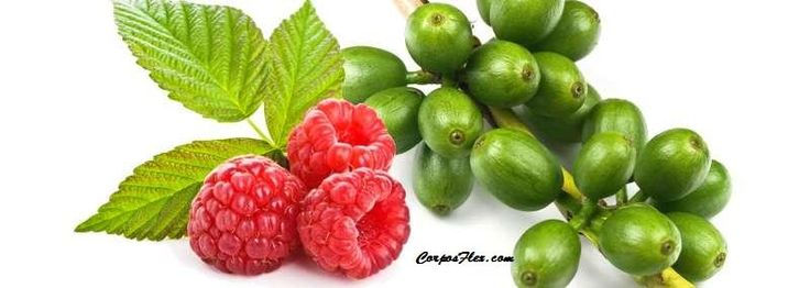 What no one tells you about Raspberry ketones + green coffee. Learn more #weightloss #corposflex #health http://www.corposflex.com/raspberry-ketones-green-coffee-60-tabs-purely-inspired