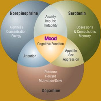 Brain Chemistry and how it effects on your mood