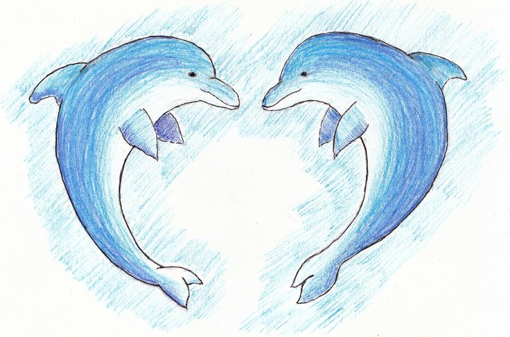 a pair of dolphins sketched with pencil crayons draw