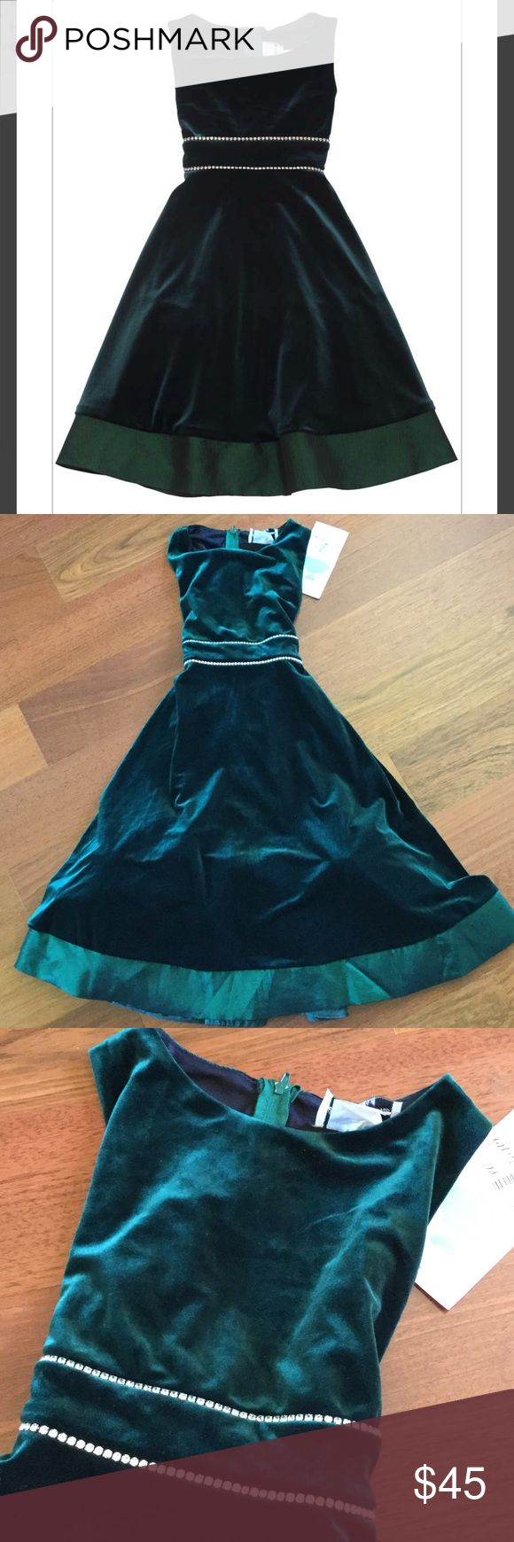 Rare Editions Hunter Green Dress with Rhinestones This beautiful dress is new and never worn. Gorgeous for formal events and holidays.  Built in crinoline for fullness. Rare Editions Dresses Formal
