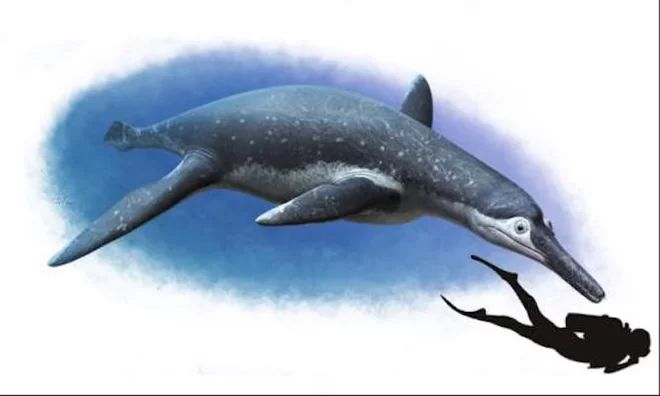Massive Marine Reptile Terrorized Squid During the Dinosaur Age | http://sibeda.com/massive-marine-reptile-terrorized-squid-during-the-dinosaur-age/