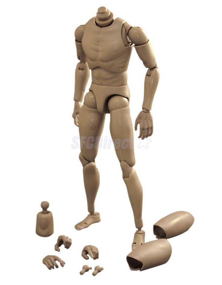 HOT Narrow Shoulder 1:6 Scale Action Figure NUDE Body Male Toys fit TTM18 TTM19 #