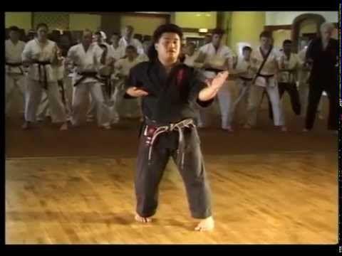 Pangai Noon Karate - Vol. I Sanchin pt 2 - YouTube