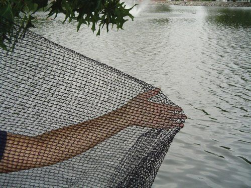 """12'x20' 1/4"""" DeWitt Deluxe Pond Netting by DeWitt. $48.24. 12 feet by 20 feet Pond Leaf Netting. 1/4 inch mesh. DeWitt Pond Netting is a sturdy, safe material to install over ponds to prevent leaves and other debris from entering the pond environment, while protecting fish and other pond life from predators. The netting is constructed of black polypropylene strands bonded together and UV-treated for longer life. Dewitt Pond Netting is easy to use and can be installed over most po..."""
