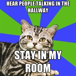 Introvert Cat.  Stay in my room AND try to be quiet so the people in the hallway don't come into my room.