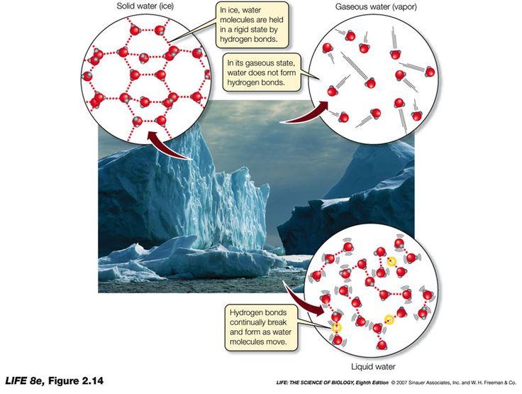 Resultado de imagen de alto calor especifico del agua