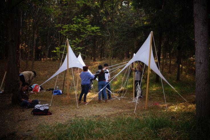 Estudiantes de arquitectura de la UNAM diseñan y construyen pabellones en el bosque de Tlalpan, México