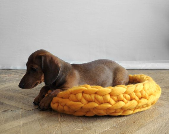 Lit pour animaux de compagnie. Confortable tapis pour par Ohhio
