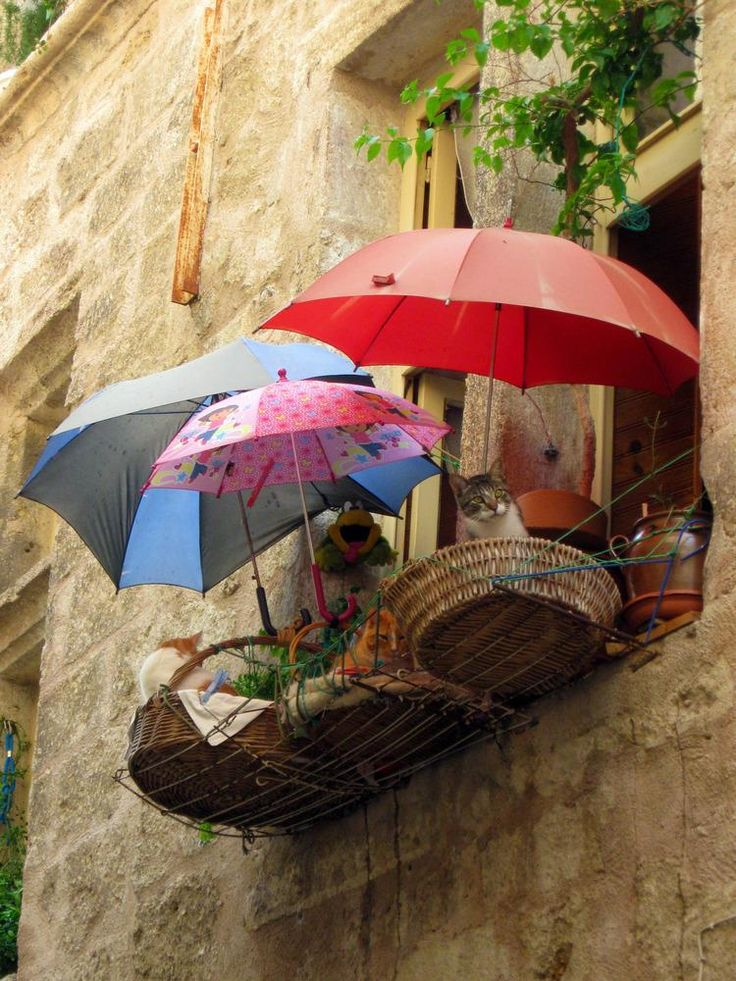 Three cats with three umbrellas lounging in  baskets on a balcony in Italy | tumblr      ᘡղbᘠ