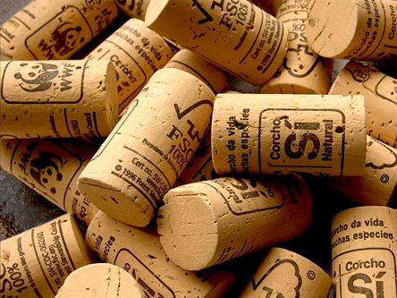 Save Corks, Cats and our Climate. Take Action | EARTH HOUR