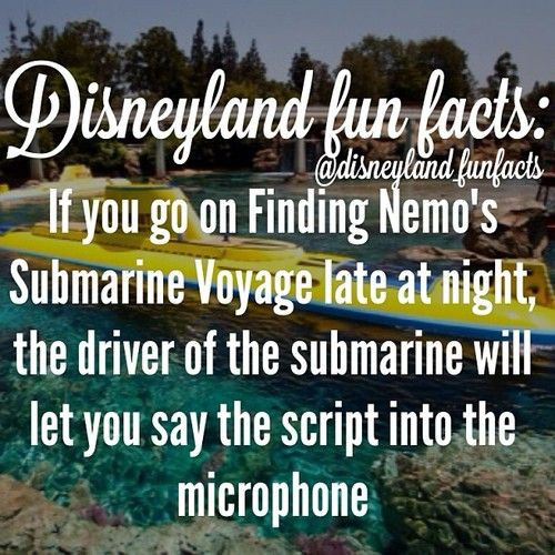 Finding Nemos Submarine Voyage