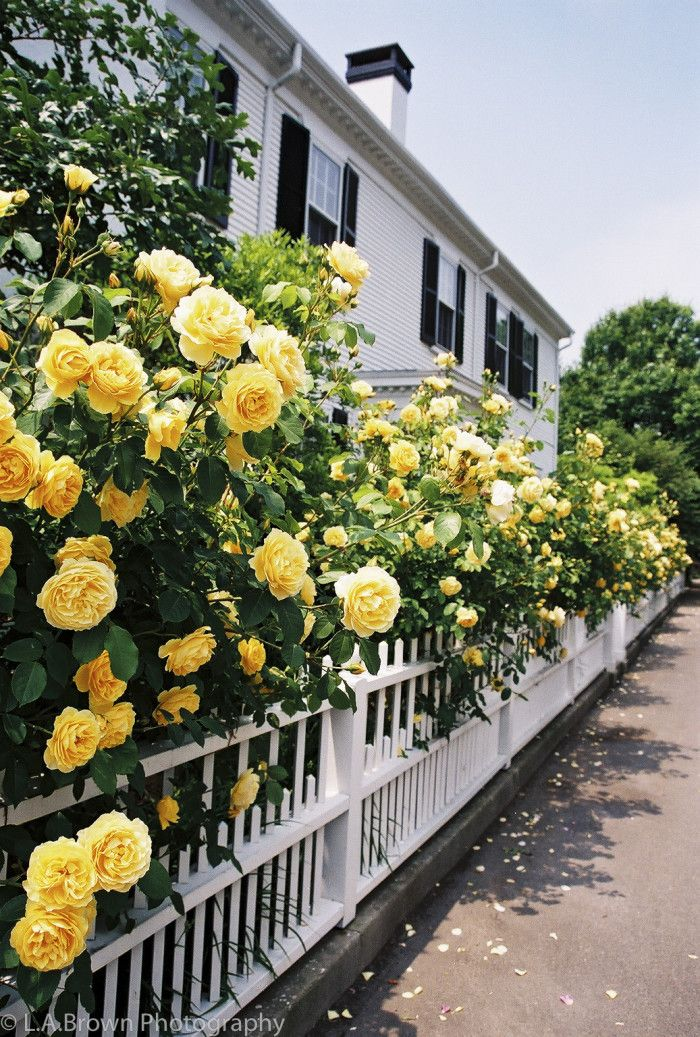 9. Edgartown, Massachusetts