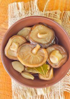 Три дореволюционных рецепта соления грибов | Публикации | Вокруг Света