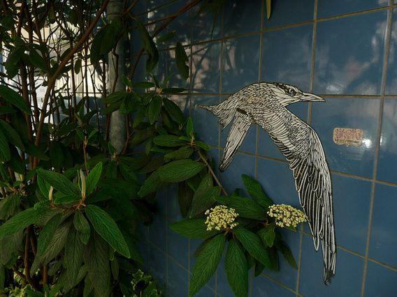 Nieuw in mijn Werk aan de Muur shop: Verborgen stencil-art onder de planten in de Kerkstraat. Foto van graffiti & muurkunst uit Amste