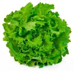 Salata Verde / La kg. Salata verde contine o substanta numita lectucarium care are capacitatea de a induce somnul, de aceea, poate fi folosita pentru tratarea insomniilor.  Site oficial: http://agro-shop.md/ Pagină oficială facebook: https://www.facebook.com/agro.shop.md/?fref=ts Grup pe facebook: https://www.facebook.com/groups/AgroShop/ Twitter: https://twitter.com/agro_shop OK: https://m.ok.ru/group/53798588186862?__dp=y