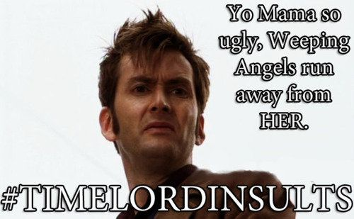 Time lord insults timelord insults timey wimey yo mama time lords
