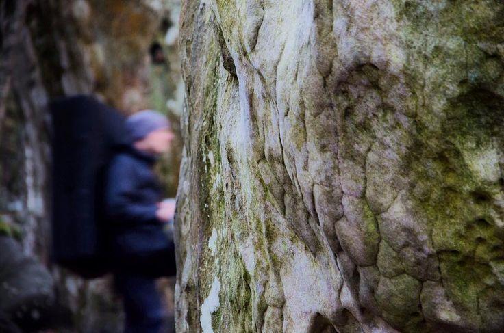 Projekt suchen  #bouldering #fontainebleau #fsthltn #bleau #instablocstuff