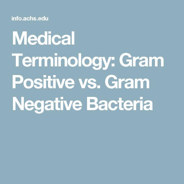 Medical Terminology: Gram Positive vs. Gram Negative Bacteria