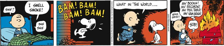 The unthinkable happens in cartoon land - Snoopy's dog house catches fire. To heck with the Van Gogh, I'd be mourning the loss of my mid century modern man cave...  http://www.pinterest.com/pin/102105116523557070/