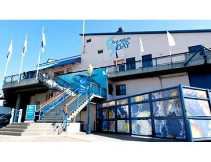 Aquarium Admission Travel Places Must Go