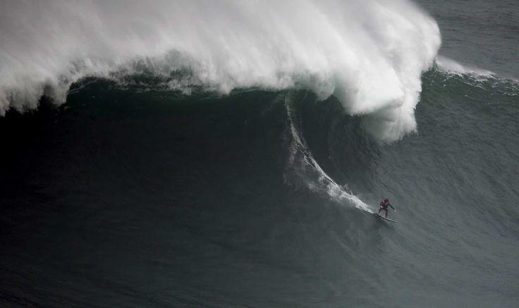 Surf - As ondas gigantes estão de volta à Nazaré - Desporto - DN