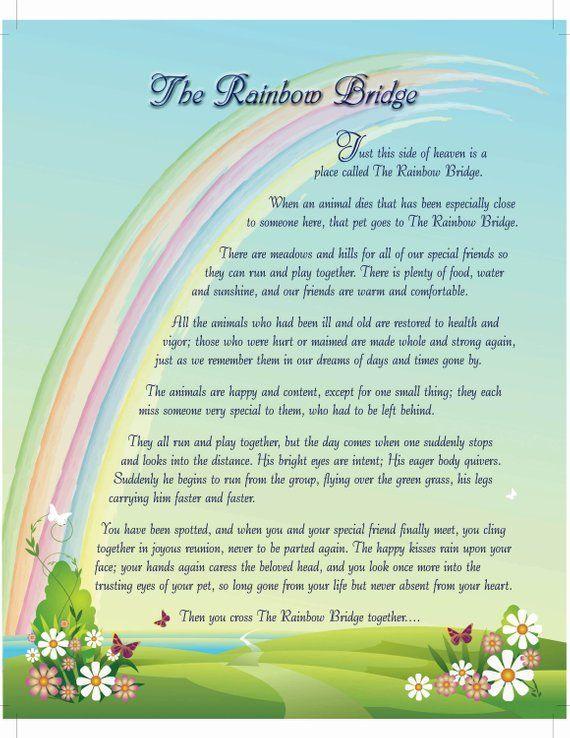 Rainbow Bridge 8x10 Digital Download You Print Dog Sympathy Etsy
