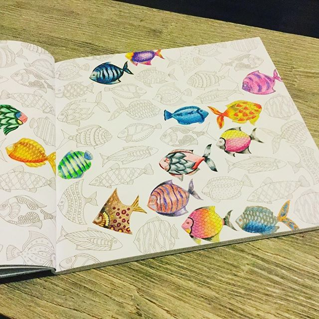 Coloured Pencils Adult Coloring Books Colouring Johanna Basford Pictures Of Fish Grey Zentangles Markers