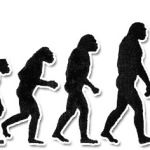 Öt szakaszai Ingatlan Befektető Evolution: 2. rész