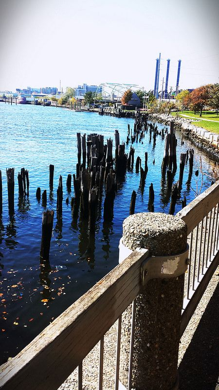 India Point East Providence RI https://www.etsy.com/listing/208324848/20-pines-6-12-inch?ref=shop_home_active_1