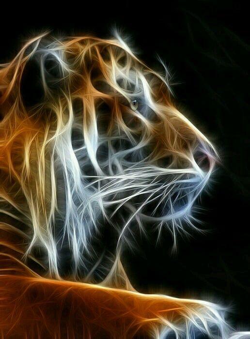 tiger fractal cats e - photo #5