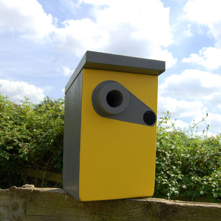Lindleywood - Handmade Speed Camera Bird Box : cameras for bird boxes - Aboutintivar.Com