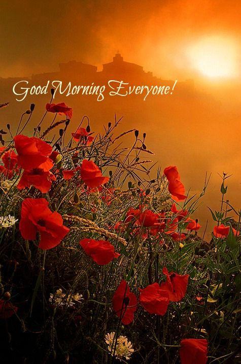 Good Morning Everyone!...:)